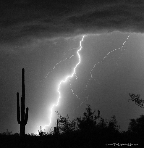 Lightning Strike in the high desert